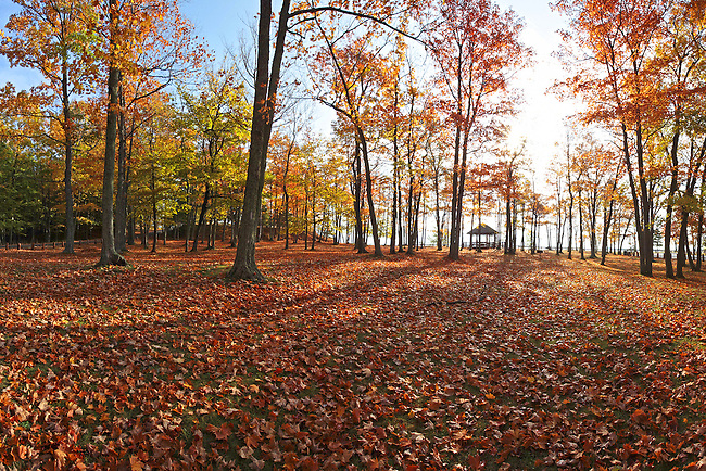 Presque Isle and autumn leaves, Marquette