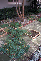Herb garden inset into concrete patio and lined with terracotta edging, helps control invasive herbs such as mints (peppermint is at fore)