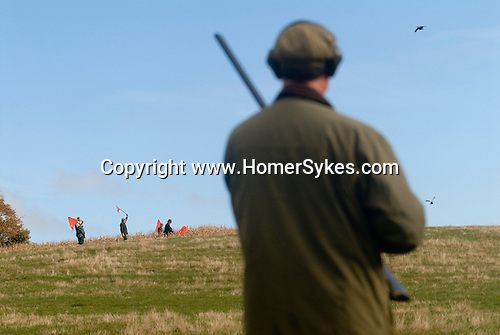 Game bird shoot St Claire's Estate, Hampshire. England