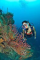 Mina Levin underwater at Salt River Canyon west, St. Croix, USVI