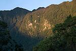 Karst mountain behind the Morite canopy platform.
