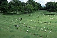 Francia Normandia Cimitero di guerra tedesco di La Cambe German Cenetery of war in Normandie, France