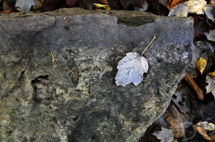NWA Democrat-Gazette/FLIP PUTTHOFF <br /> Fall is an ideal time to visit     Oct. 21 2016   Sweden Creek Falls Natural Area and other tracts cared for by the Northwest Arkansas Master Naturalists.