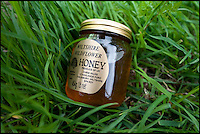 BNPS.co.uk (01202) 558833<br /> Picture: PhilYeomans/BNPS<br /> <br /> Major Wilks unique tasting honey.<br /> <br /> Long hot summer a boost for the bee man of Salisbury Plain.<br /> <br /> One of Britains last wilderness area's is a hive of activity this summer as an army of busy bees swarm across Salisbury plain in Wiltshire.<br /> <br /> Major Chris Wilkes commands an astonishing 8 million bees in 150 hives dotted across the unique enviroment of the plain. The chalkland host's an amazingly wide range of rare wildflowers as 60,000 acres of SSSI have never been treated with modern pesticides.<br /> <br /> The wet winter and dry spring have produced perfect conditions for the diverse flora of the grasslands, with the isolation of the plain creating a cornucopia of the top nectar flowers in the UK  producing a honey with the distinctive flavour of one of Britains last wilderness areas.