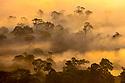 Borneo: Scenery