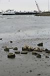 Foto: VidiPhoto<br /> <br /> LENT - De waterstanden in de grote rivieren, zoals hier de Waal tussen Lent en Ochten, blijft dramatisch laag. Gevolg is dat binnenvaartschepen elkaar soms rakelings moeten passeren. Rivierstrandjutters beleven echter gouden tijden. Restanten van oude schepen, bouwwerken en oorlogstuig worden nu zichtbaar. De verwachting is echter dat het waterpeil de komende dagen weer langzaam stijgt. Het waterpeil in Waal en Rijn heeft in 40 jaar niet zo laag gestaan.