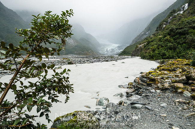 Franz Josef Glacier Valley and Waiho River after and during heavy rainfall. Franz Josef Glacier in background, Westland Tai Poutini National Park, UNESCO World Heritage Area, West Coast, New Zealand, NZ