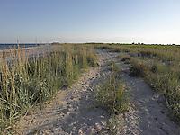 SEA_LOCATION_80386