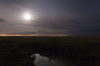 The full moon shines through an overcast night sky to illuminate a pond and sawgrass prairie in the Shark Valley section of Everglades National Park, Florida.