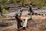 Joe Moore and Ronnie Burton measure the recently cut railroad tie with a length of iron.  This tie has some knotted wood which may need to be cut away and the men are determining if the tie length will be long enough afterward. Photo by Amy Gaskin