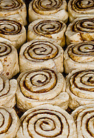 Cinnamon buns, laid out in rows on the baking pan, their cinnamon spiral swirls facing up.