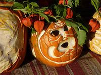 Pumpkin face carved for display at pumpkin festival