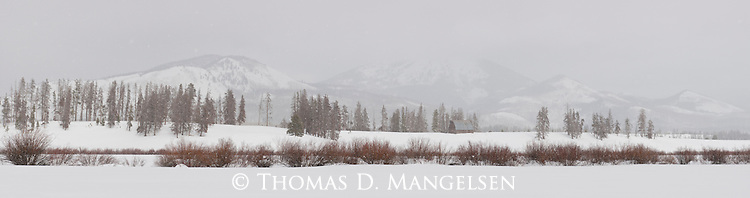 The ambience of a winter morning created by soft light filtered thru downy flakes, surrounds a secluded barn backdropped by cloud-shrouded mountains on Steamboat Lake in Northwest Colorado.