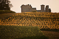 Europe/France/Midi-Pyrénées/32/Gers/Lagardère: Champ de tournesols et Château féodal