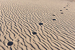 Death Valley National Park, California; human footprints in the ripples in the sand on the Mesquite Flat Sand Dunes in early morning sun and shadows
