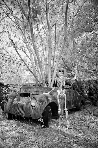 During a pit stop on the Highway to Hell bound for the Other Side and the big Halloween party, Jake waves to passersby while standing beside his 1934 Chevy&hellip;it&rsquo;s a good place to enjoy the scenery and fresh air in rural roadside America while resting your bones. Traveling light yet still in style, he packs only his fedora and sunglasses along with some cigars. Better get that headlight fixed at the next gas station!<br /> <br /> Taken in a classic car junkyard, this car is firmly rooted in the landscape forever and always. Another photograph of the car taken here on an earlier visit can be seen in image #14212 Branch Office. I knew then I would make this image with a skeleton the next time through for a good laugh, and Jake was stood up with a rebar post and posed with strings that were removed later in Photoshop. For added effect, the image was taken with a specially modified infrared camera using a black and white filter that turns the green foliage white and blue skies dark.