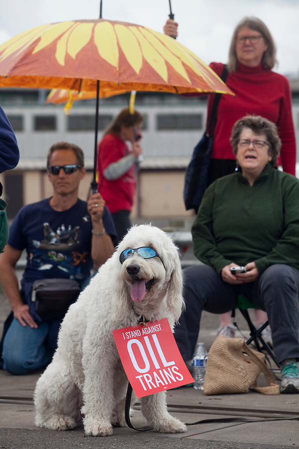 Baxter, from Camas, takes part in a demonstration that saw BNSF rail tracks blocked by protesters in Vancouver Saturday June 18 2016. (Photo by Natalie Behring for the Columbian)