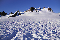 Mt Olympus and Blue Glacier, Olympic National Park, Washington