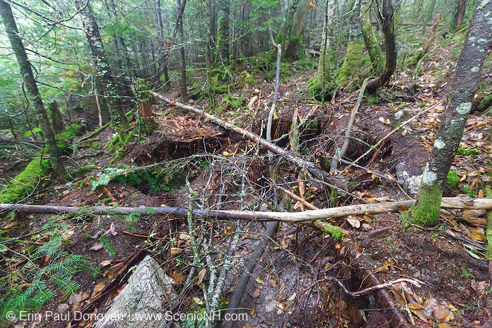 2016 - Large holes on the side of the Mt Tecumseh Trail in Waterville Valley, New Hampshire during the summer months. Rocks for stone staircases being built along the trail are taken from the side of the trail, and these holes are left behind.