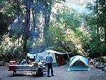 Campers at Big Basin State Park