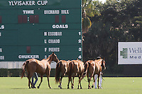 WELLINGTON, FL - FEBRUARY 05:  Scenes from the Ylvisaker Cup at the International Polo Club Palm Beach on February 05, 2017 in Wellington, Florida. (Photo by Liz Lamont/Eclipse Sportswire/Getty Images)