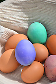 Stock photos of Easter eggs in a basket