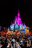 Disney's Electrical Parade (with Cinderella Castle in back), Magic Kingdom, Walt Disney World, Orlando, Florida USA