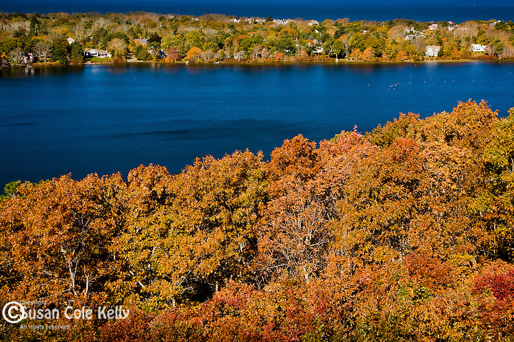 Fall foliage surrounds Scargo Pond in Dennis, Cape Cod, MA, USA