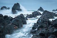 Moody coastline with rock formations and starfish near Rapahoe near Greymouth, West Coast, New Zealand