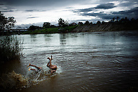 Two Karen boys playing in the Moei river that forms the natural border with Thailand and Burma (Myanmar). In this mosquito infested region, the malaria parasite is considered the to be the most resistant form in the world.