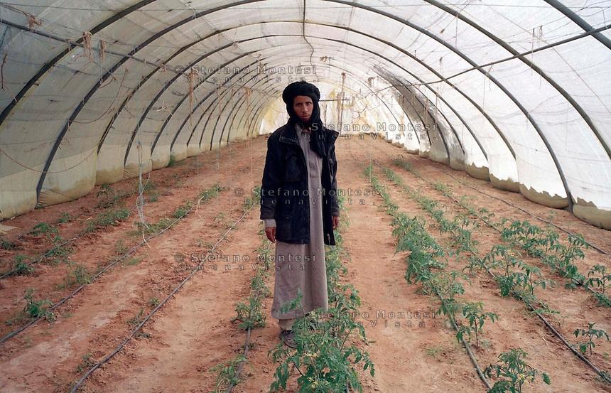 Febbraio 2012.The Saharawi refugee camp El Aayun..Un lavoratore nell'orto di El Aayun..