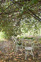 In the garden at La Chiesuola a table and chairs are positioned to make the most of the shade cast by an ancient tree
