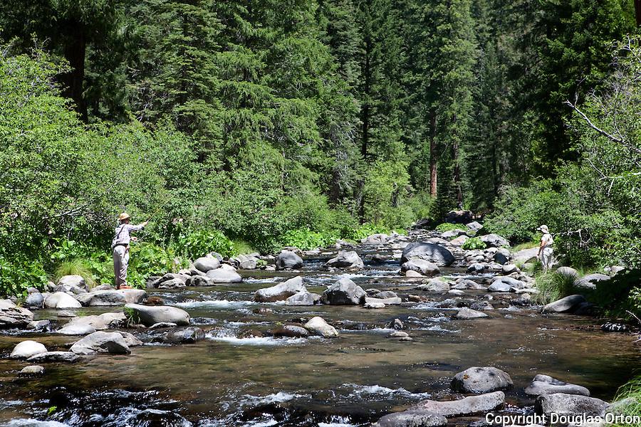 Fly fishing california douglas orton imaging for Deer creek fishing