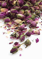 Drying Rose buds