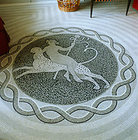 Detail of the marble mosaic floor of the library which depicts Dionysus riding a leopard