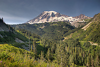 Majestic Mt. Rainier looms above the surrounding forest in the National Park.