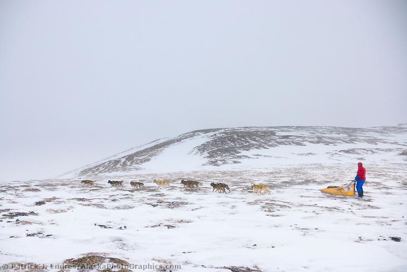 2006 Yukon Quest musher Hans Gatt in near whiteout conditions on Eagle Summit.