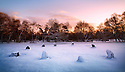 Nine Ladies Stone Circle, a Bronze Age site with covering of snow at dawn, Peak District National Park, Derbyshire, UK. January.