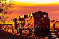 Gallup-Freight Trains
