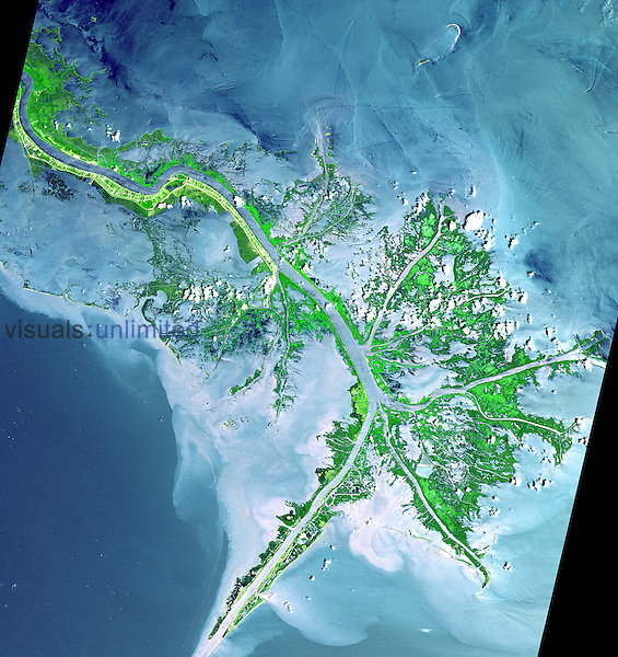 As the Mississippi River enters the Gulf of Mexico it loses energy and dumps sediment carried from mid continent and creates a delta with many channels, mudflats, and marshes. The main shipping channel of the river is the broad stripe running northwest to southeast. This 2001 image was acquired by the Advanced Spaceborne Thermal Emission and Reflection Radiometer (ASTER) on NASA's Terra satellite.
