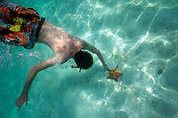 Snorkeller touching starfish on seabed, Saona Island, Dominican Republic