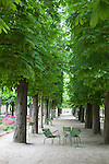 Empty chairs in between a row of trees in spring, Tuileries Gardens (jardin des Tuileries) Paris, France