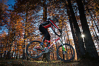 Mountain biker performing a jump in the Common beech (Fagus sylvatica) forest of the Tarcu Mountains Natura2000 site. Southern Carpathians, Munții Ṭarcu, Caraș-Severin, Romania.