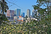 "A shot of the Bellevue skyline thru the trees, using a ""rearward"" look at the eastside skyline."