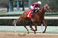 02-20-17 Southwest Stakes Oaklawn