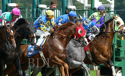 Dr. Rockett, #3, and Lusty Latin, gray, break from the gate at Saratoga.  7/28/04.