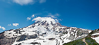 Mount Rainier from near Paradise in summer, Mt Rainier national park, Washington, USA