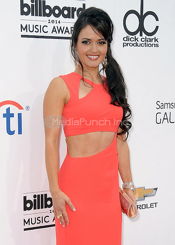 LAS VEGAS, NV - MAY 18:  Danica McKellar at the 2014 Billboard Music Awards at the MGM Grand Garden Arena on May 18, 2014 in Las Vegas, Nevada.PGSK/MediaPunch