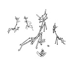 Hoffnung's Menagerie. (Music stands transformed into stick insects)