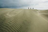 group of people walking on sand dunes